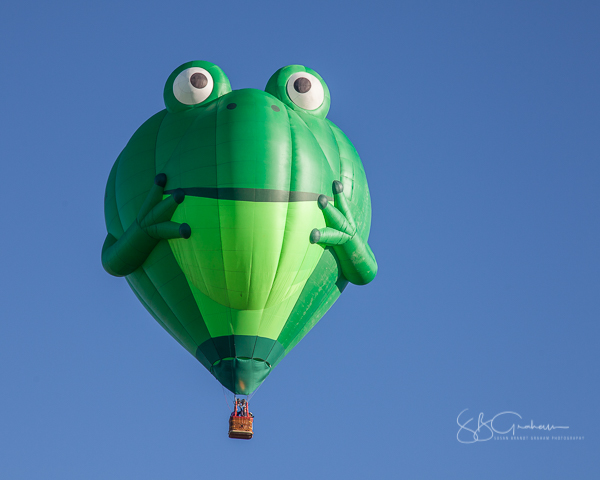 2017 balloon fiesta special shapes