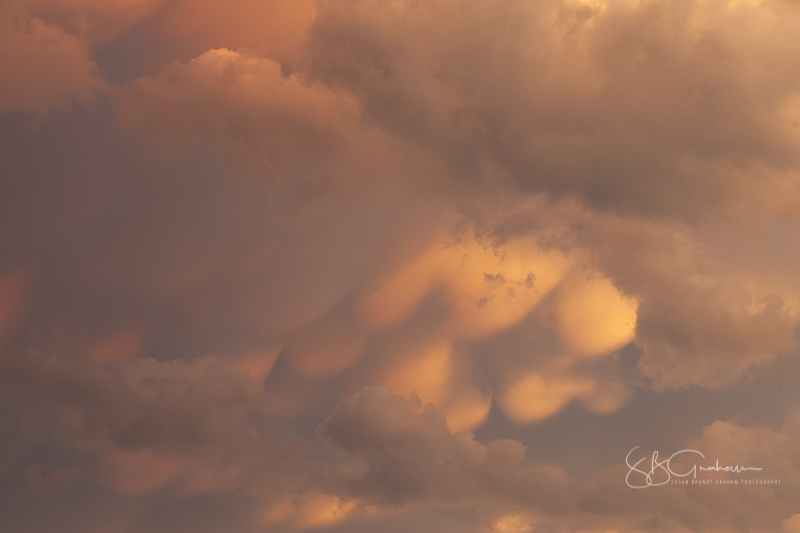monsoon mammatus clouds
